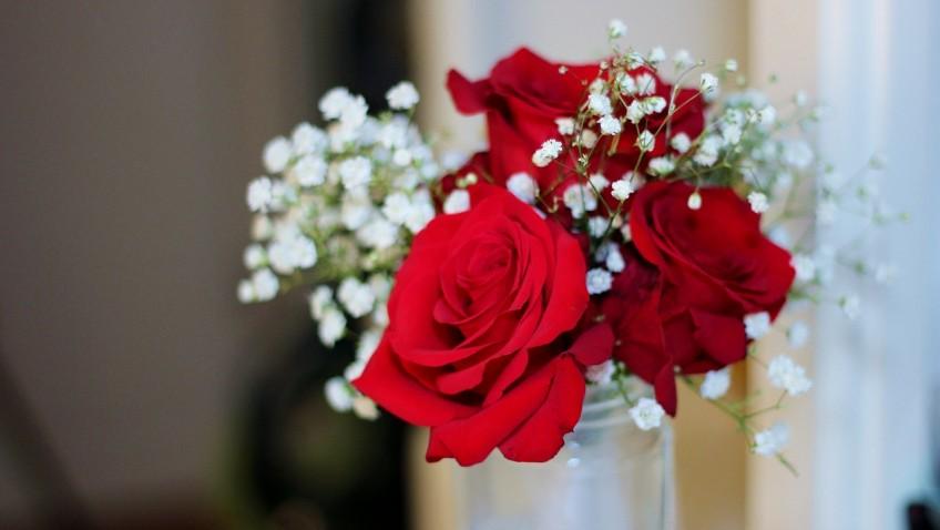 Saint-Valentin : attention au langage des fleurs