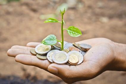 Et si on investissait dans l'écologie ?