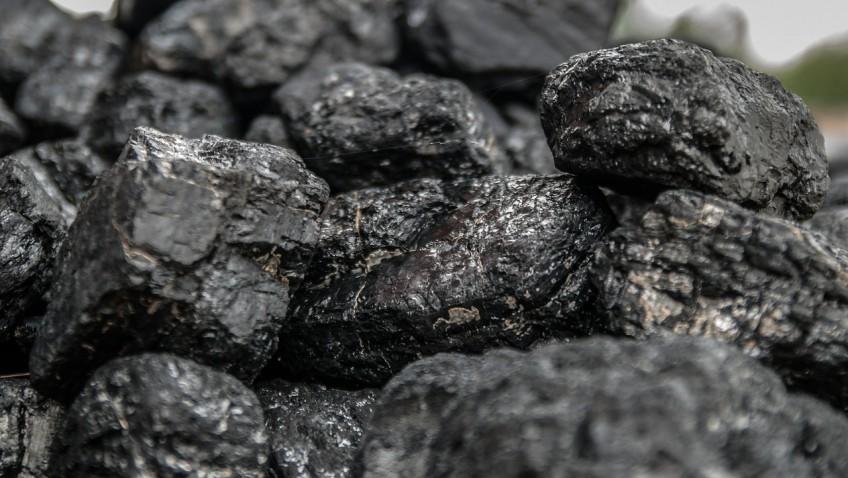 Le charbon végétal : un véritable remède contre les ballonnements